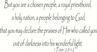 1 Peter 2:9-12 Christian Wall Art