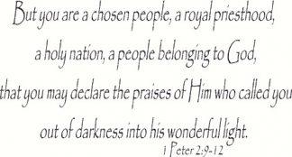 1 Peter 2:9-12 Christian Wall Art