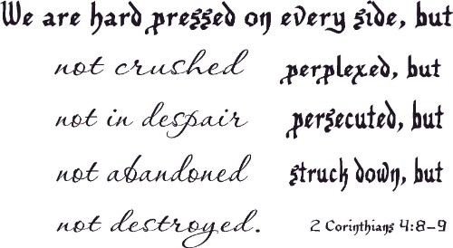2 Corinthians 4:8-9 Vinyl Wall Decal by Scripture Wall Art Image