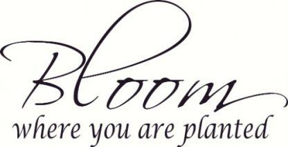 Bloom Where Are Planted Bible Verse Vinyl Wall Decal