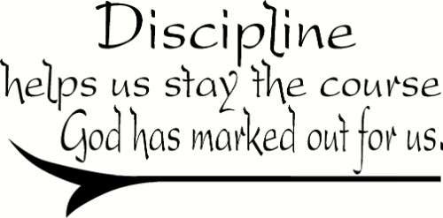 Discipline Vinyl Wall Decal by Scripture Wall Art Image