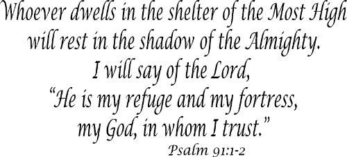 Psalm 91:12 ~ Vinyl Wall Decal by Scripture Wall Art Image