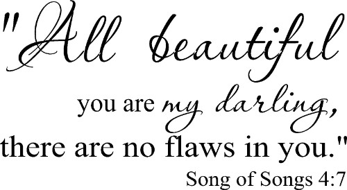 Song of Songs 4:7 ~ Vinyl Wall Decal by Scripture Wall Art Image