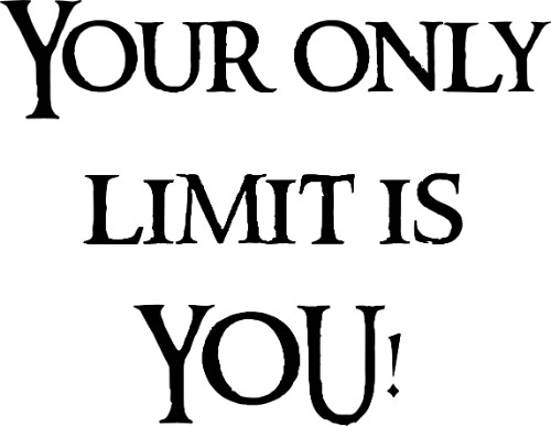 Your Only Limit Is You ~ Motivational Vinyl Wall Decal Quote Image