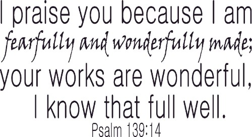 Psalm 139:14 V1 Vinyl Wall Decal by Scripture Wall Art Image
